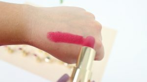 Monica-Vizuete-Swatches-Pierre-Rene-Royal-Mate-lipstick-16-Eternal-flame